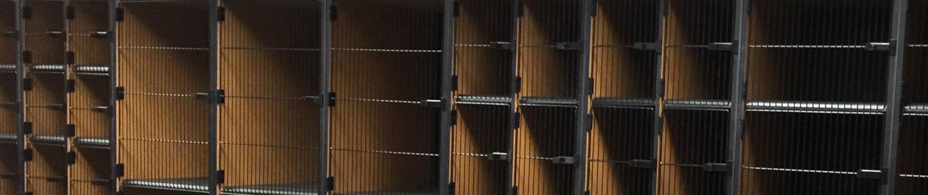 Wire Doors